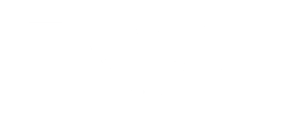 pov-logo-white-transparent.png