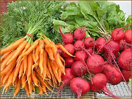 CarrotsBeets