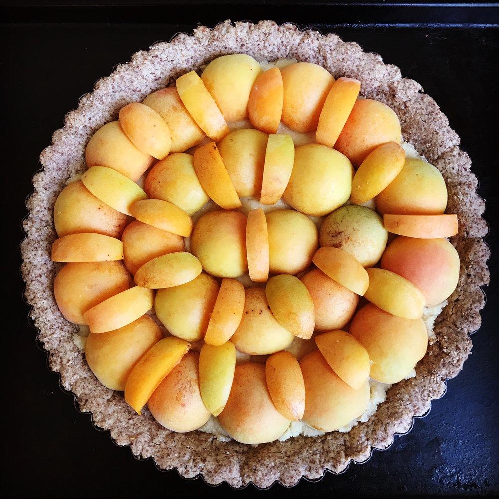 apricot_tart.JPG