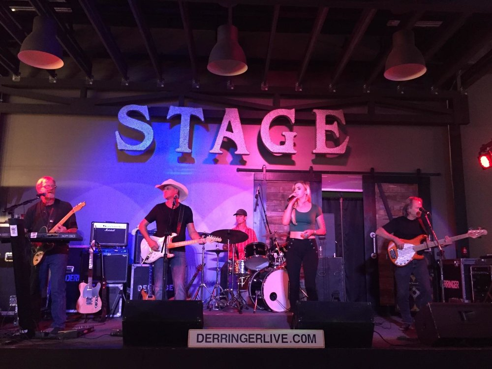 Come get a little western with Derringer and the gang!