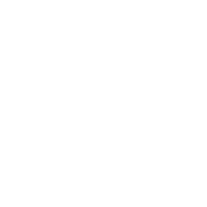 fetch photography