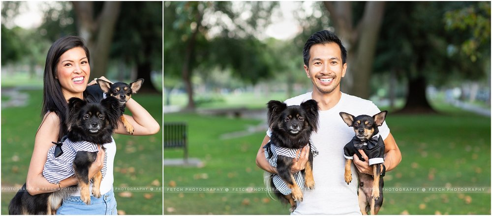 los-angeles-pet-photographer