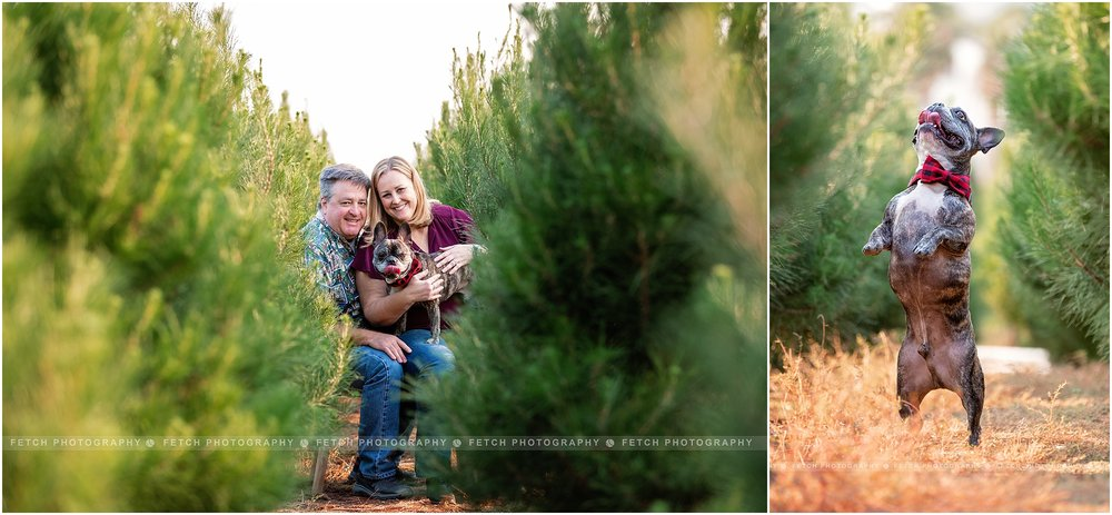 lifestyle-family-photography