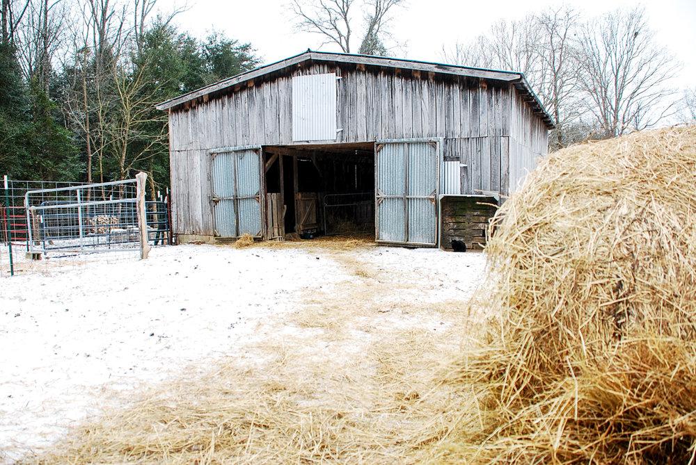 1 barn - hay.jpg
