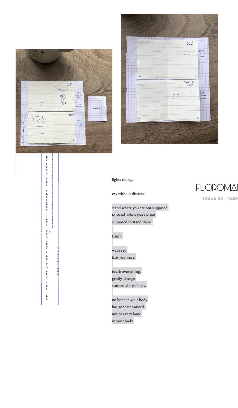 floro_1 copy.jpg