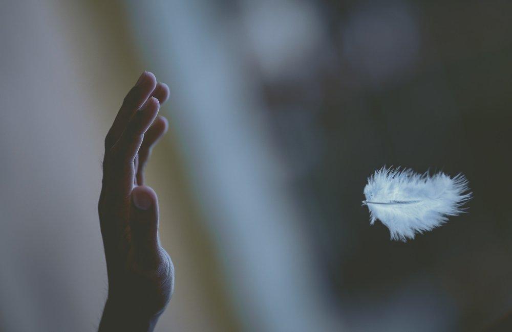 feather magic2.jpeg