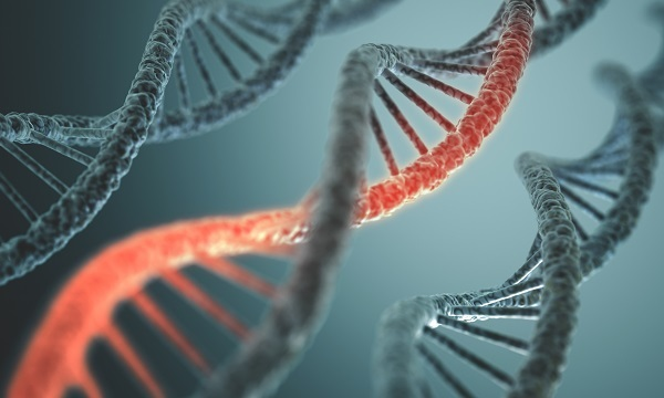 DNA may exonerate two men