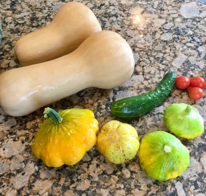 One of our harvests this summer which included butternut squash!