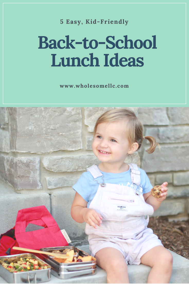 Back to School Lunch Ideas - Wholesome LLC