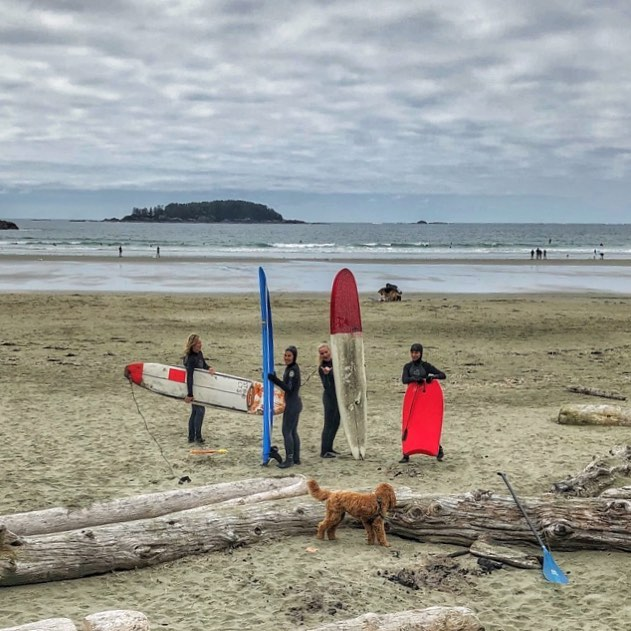 @annabelhawk and @msjessdan in full babe mode with the blonde beach waves. While @mseligh and I opt for the shark prey look, head to toe in a wet suit a million inches thick. It ain't cute but it's practical AF. 🏄🏻♀️ #Tofino
