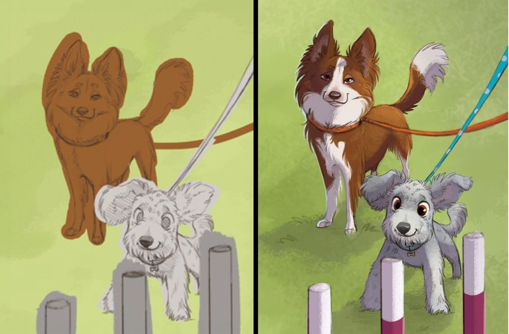 Start to Finish:  Psyche the Border Collie and CAVU the Pumi   (c) Morgan Spicer
