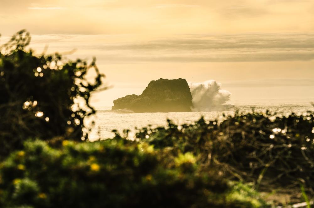 Coast-14.jpg