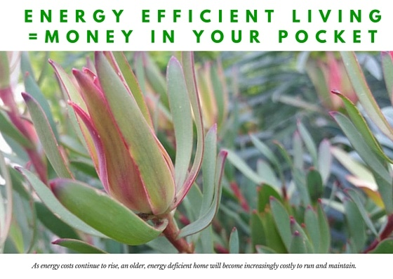 Energy-efficiency.jpg