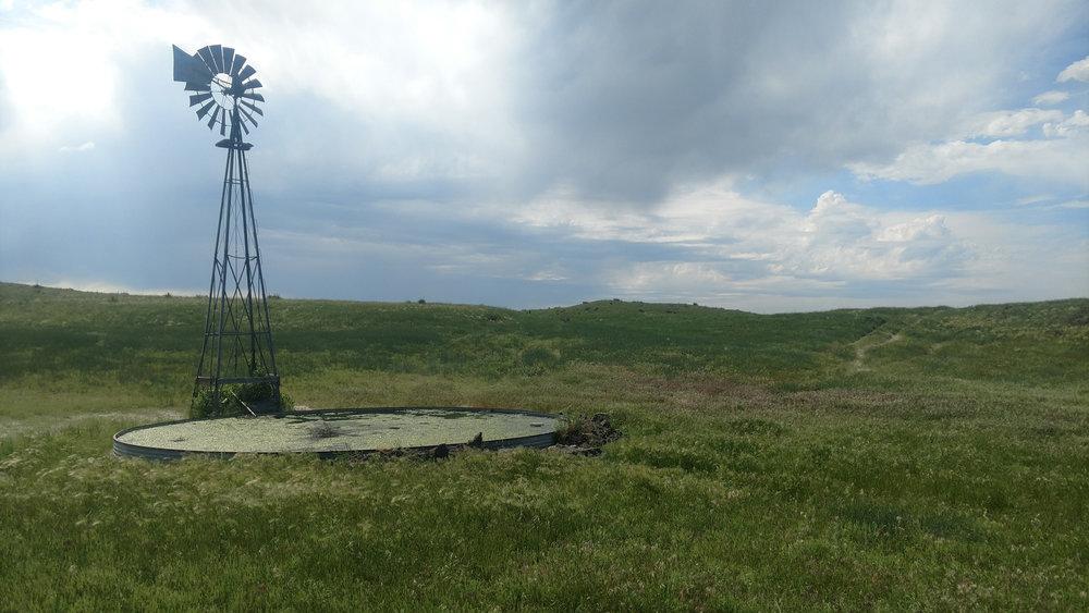 windmill pic.jpg