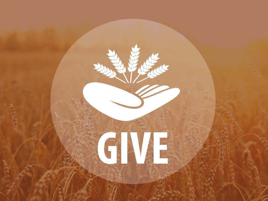 Give2016_ANN.jpg