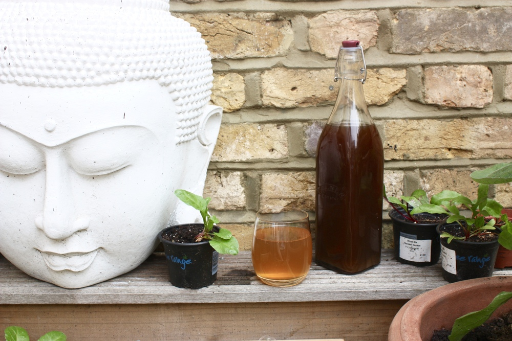 Elderflower cordial hanging out with Buddah and the beetroots