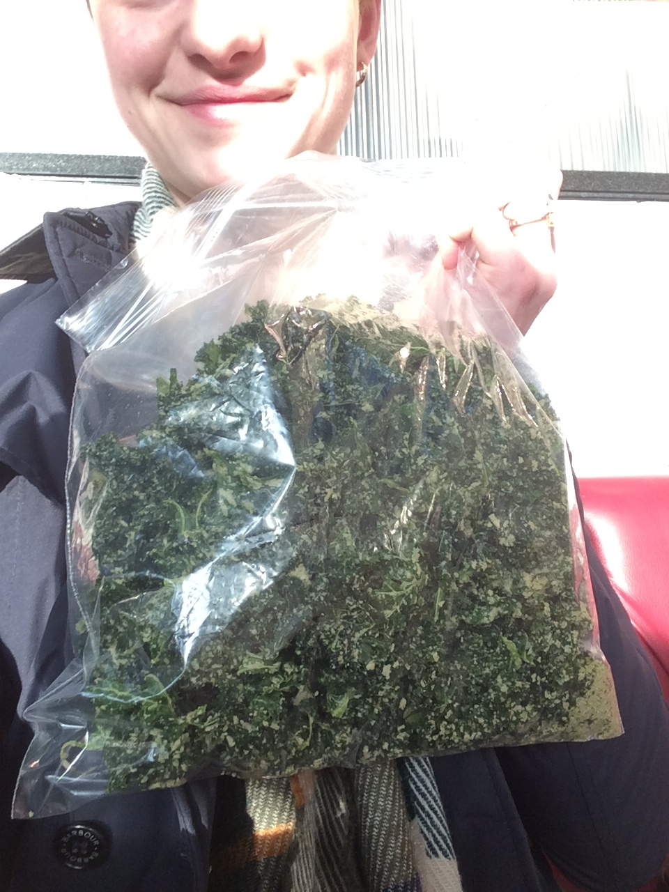 Kale chips: the best plane snack!