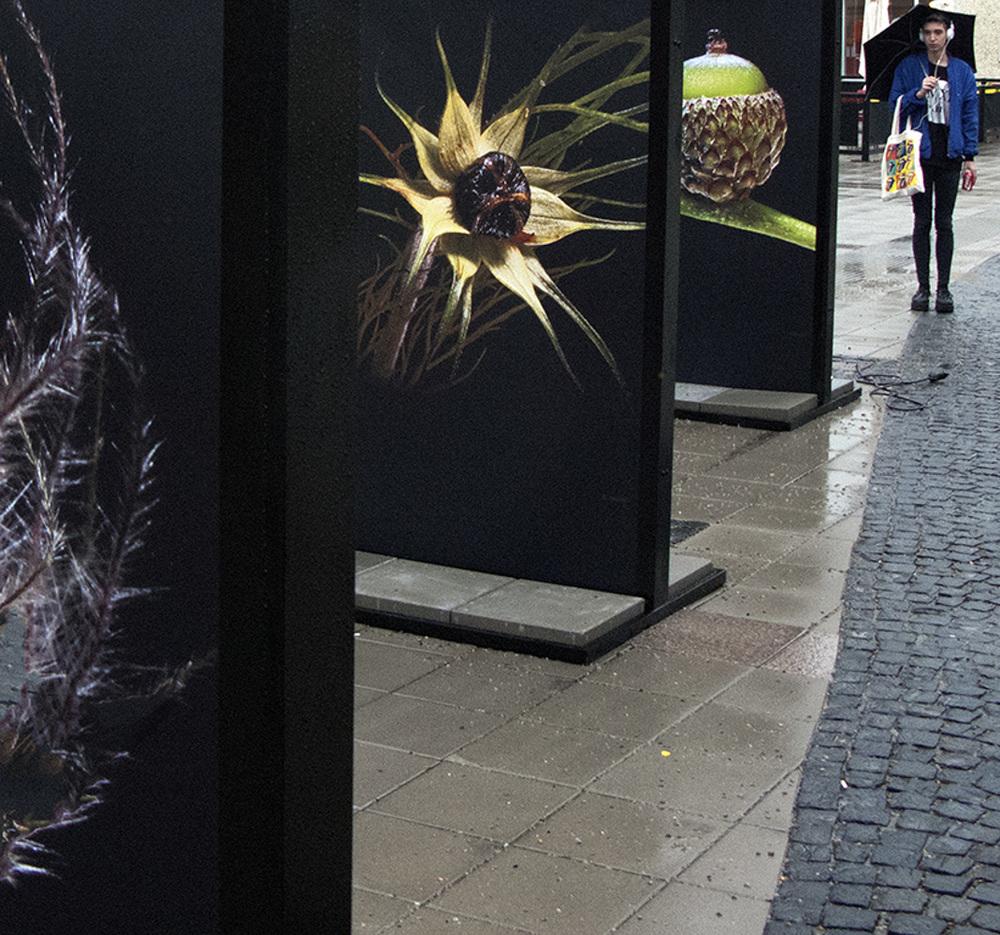the-exhibit-2-2.jpg