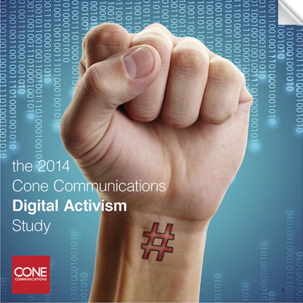 2014 Digital Activism Study