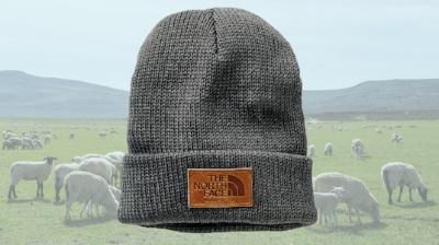 pyp northface beanie.png