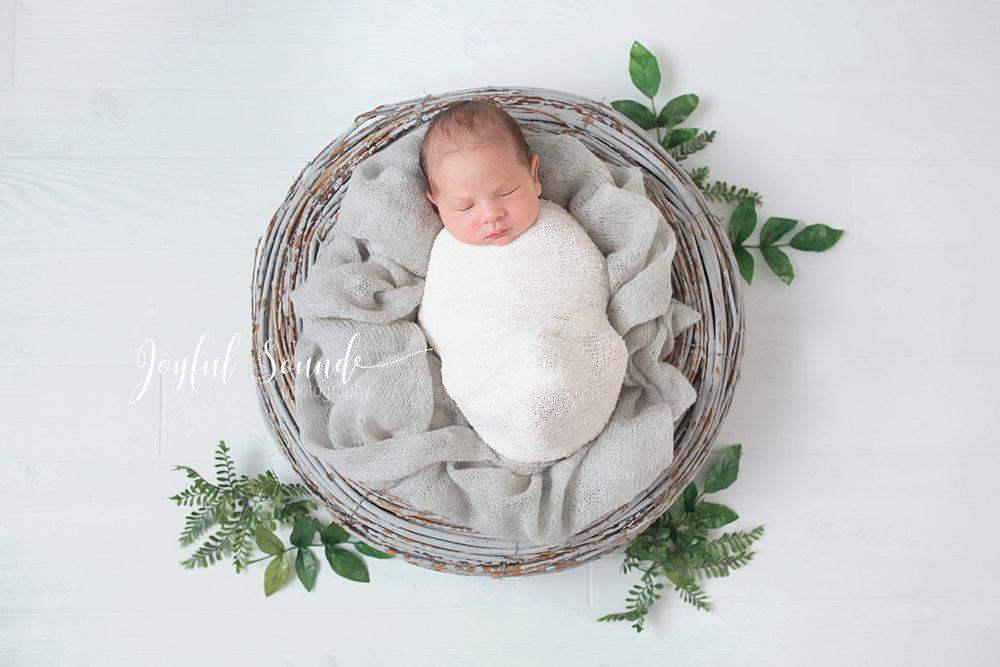 newborn houston.jpg
