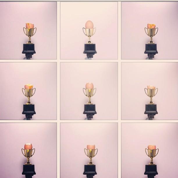 #dropbox #design #portfolio  #granta #bestyoung #egg #cover #magcover