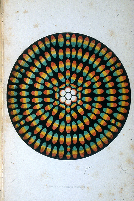 smithsonianlibraries :     From Hans Christian Oersted's  Der Geist in der Natur  (1850) (via  Smithsonian Institution Libraries : Color patterns 2003-28012 )