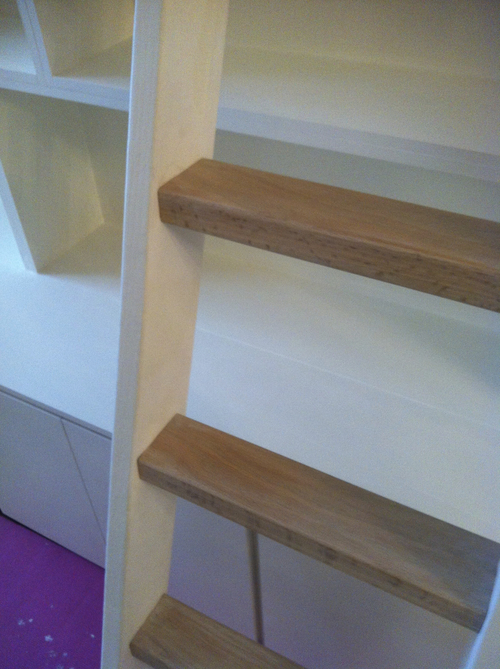 Bookcase+Close-Up+on+Ladder.jpg