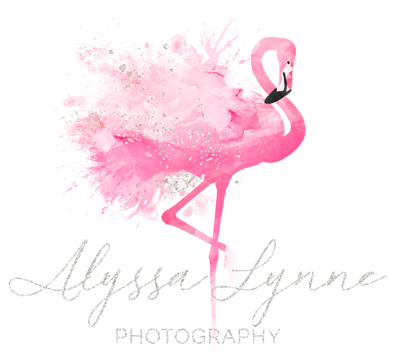 Alyssa Lynne Photography