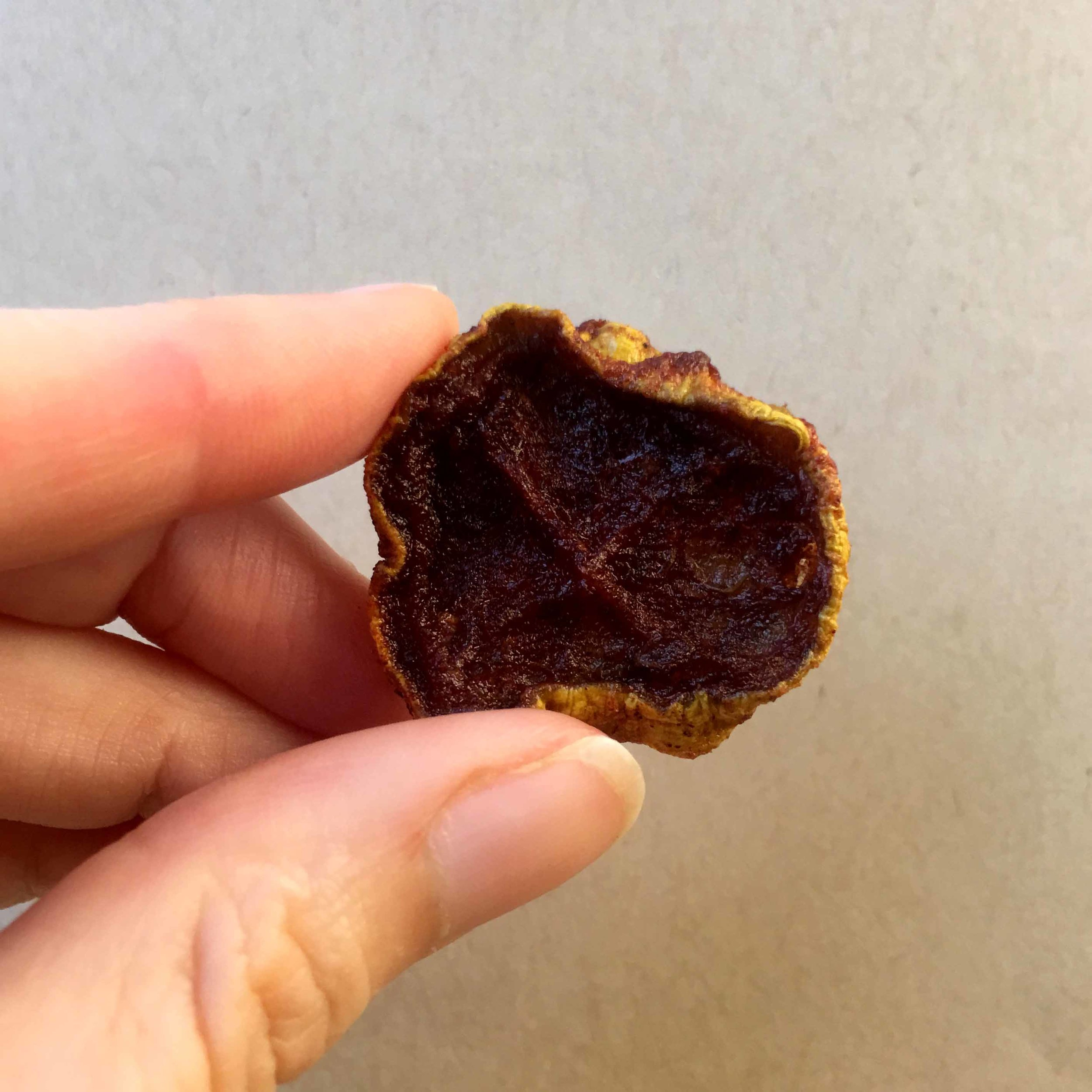 Low Carb Mock Dried Apples Made From Squash