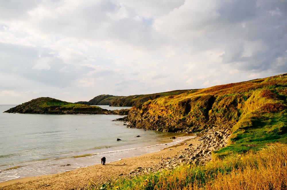 Wales-66.jpg