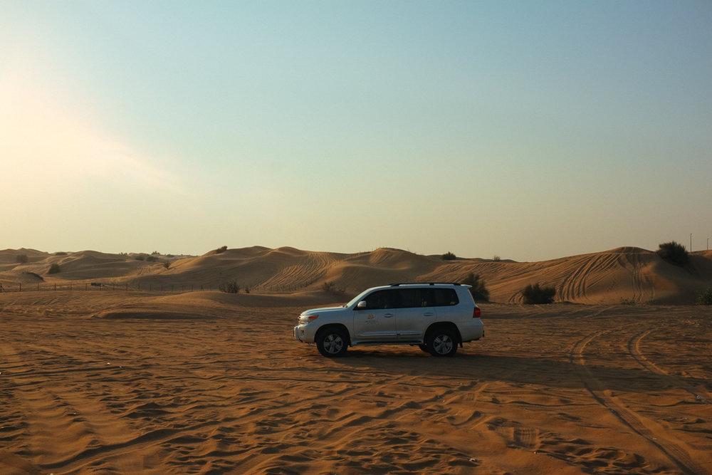Desert Safari-1.jpg
