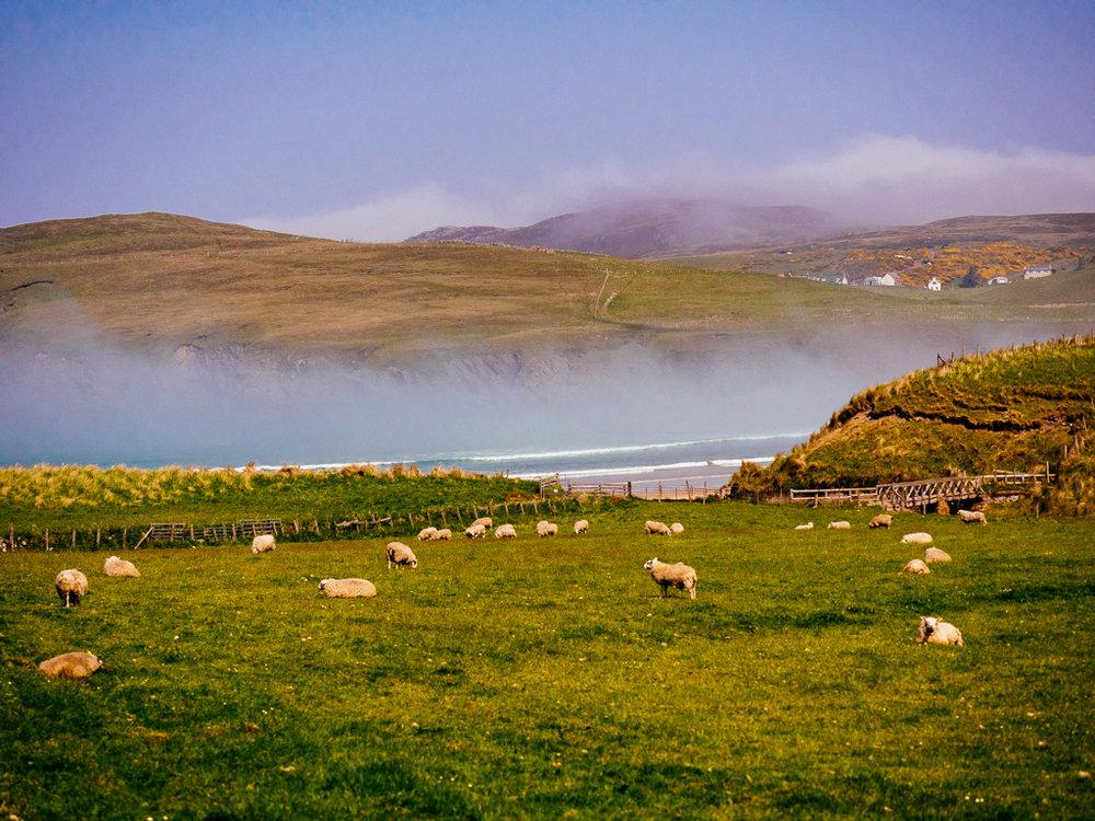 Scotland-151.jpg