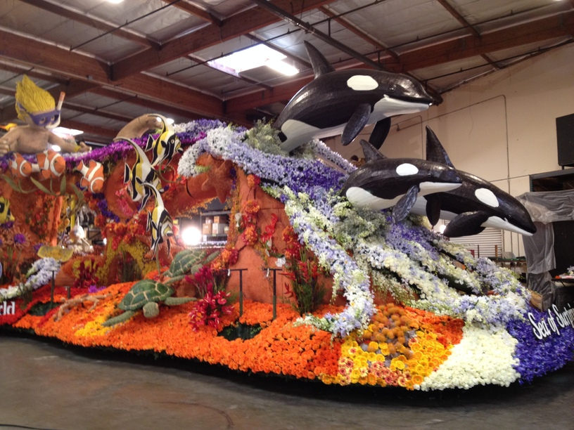 Side view of the float the morning of the judging.
