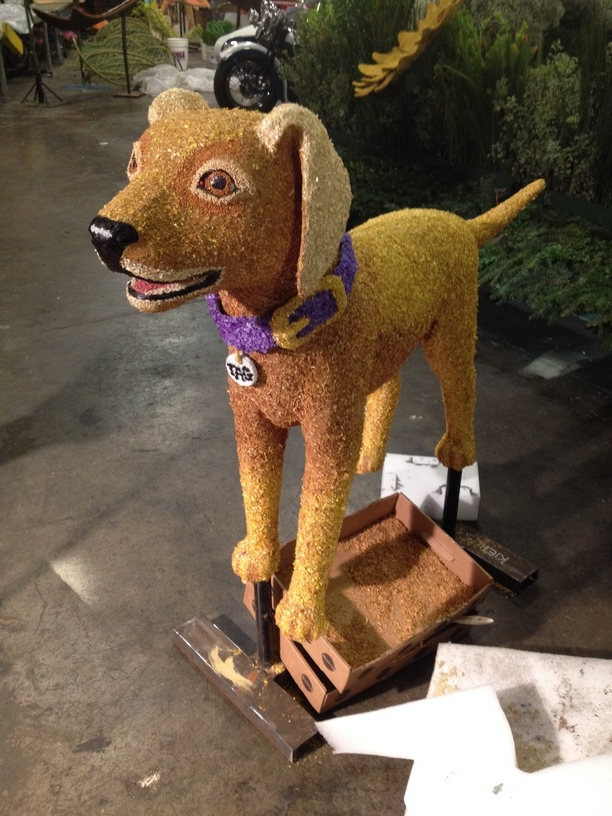 Tag the yellow lab finshed and ready to be attached to the float.