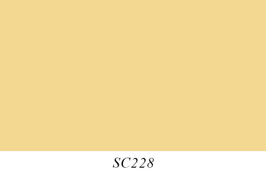 SC228.jpg