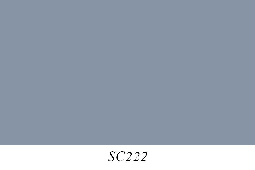 SC222.jpg