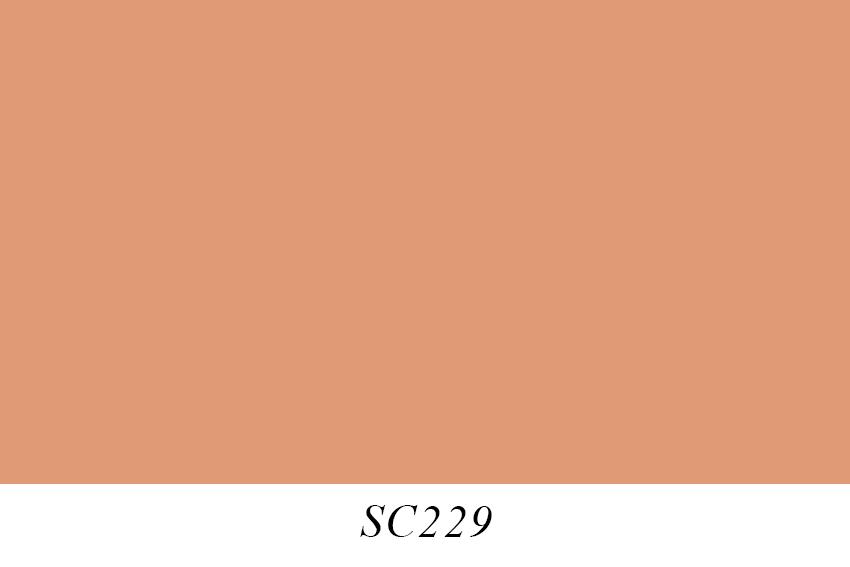 SC229.jpg