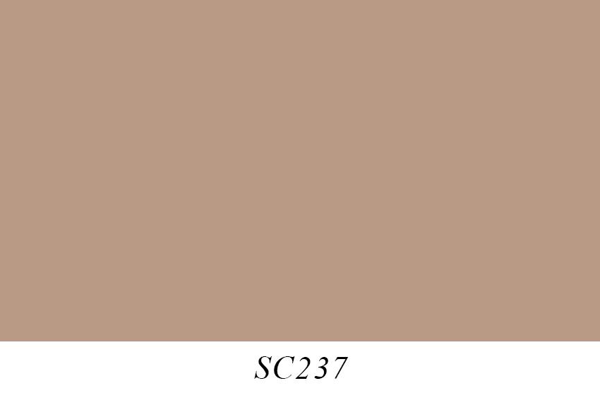 SC237.jpg
