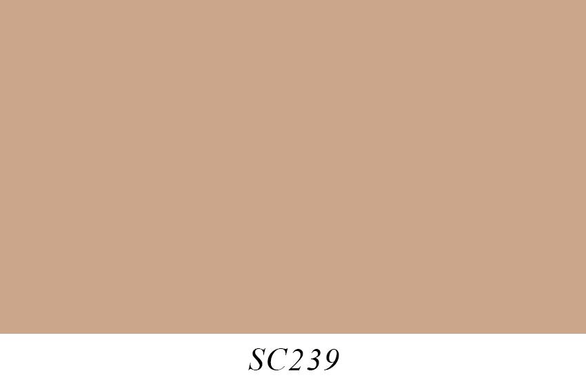 SC239.jpg