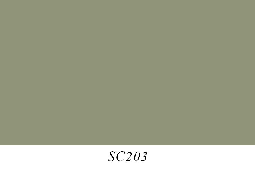 SC203.jpg