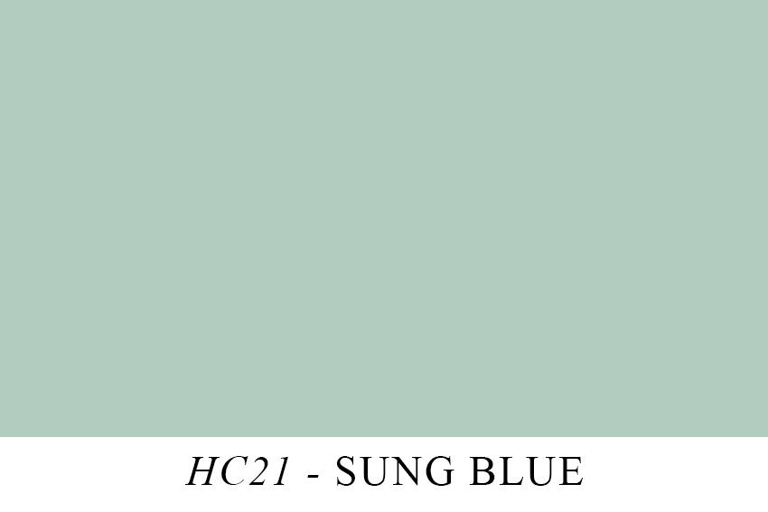 HC21.jpg