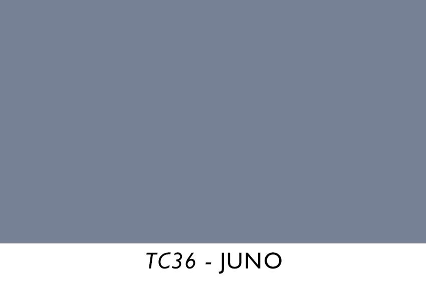 TC36.jpg