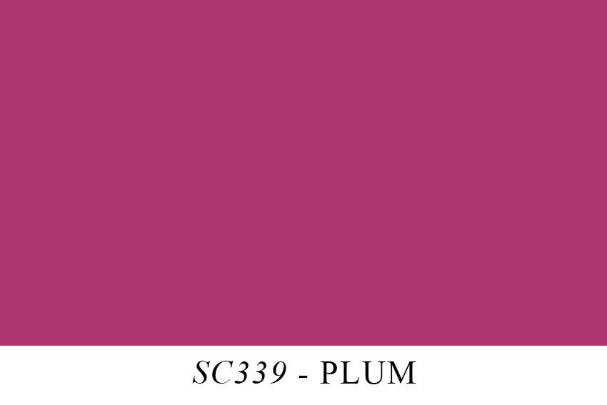 SC339.jpg