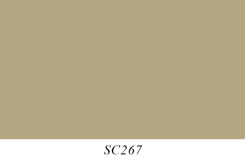 SC267.jpg