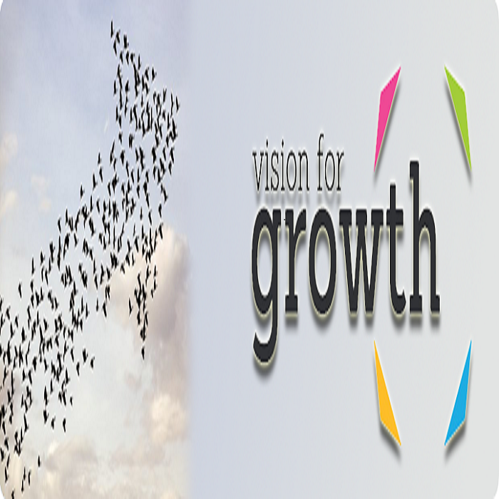 visionforgrowth700.png