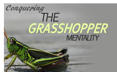 GrasshopperSlide.png