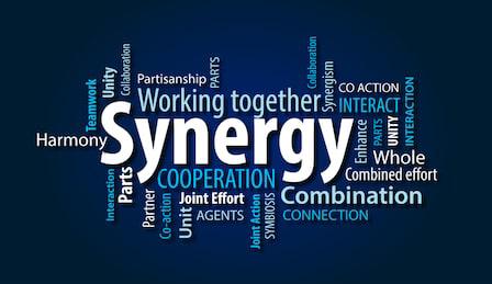 Synergy19.jpg