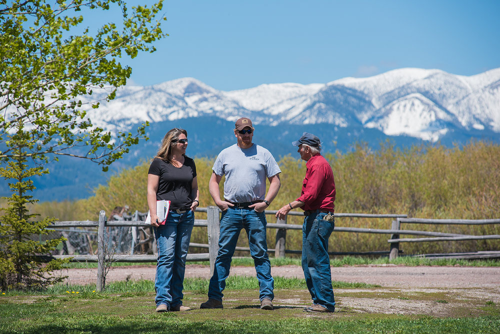 Local land owner, dale,  in Kilgore, Idaho - centennials make a nice back drop don't they?