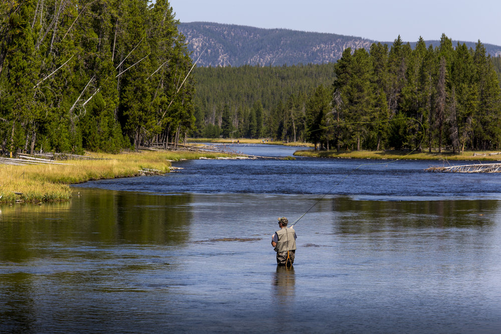 Cody is known for great fly fishing opportunities.  Rick Smith Media for Cycle Greater Yellowstone